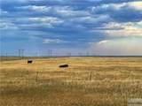 2,147 Acres Rapelje Road - Photo 23