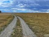 2,147 Acres Rapelje Road - Photo 24