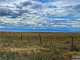 2,147 Acres Rapelje Road - Photo 29