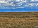 2,147 Acres Rapelje Road - Photo 31
