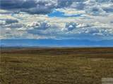 2,147 Acres Rapelje Road - Photo 32