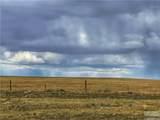 2,147 Acres Rapelje Road - Photo 33