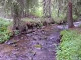 0 Smith River Rd - Photo 4