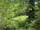 1 Bear Dance Trail Trail - Photo 12