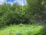 1 Bear Dance Trail Trail - Photo 14