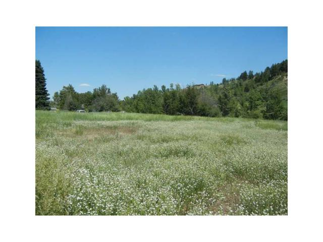 3 Daly #3, Red Lodge, MT 59068 (MLS #243274) :: The Ashley Delp Team