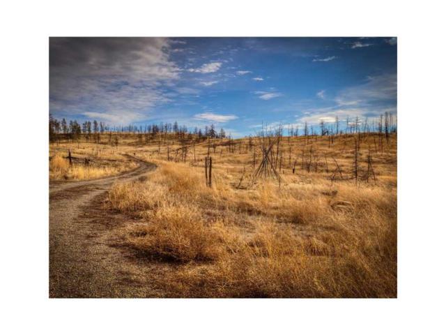 2 & 2B Trails End Road, Roundup, MT 59072 (MLS #250670) :: The Ashley Delp Team