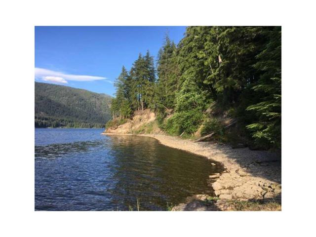 1 Lower River Rd, Heron, Other-See Remarks, MT 59844 (MLS #263053) :: The Ashley Delp Team