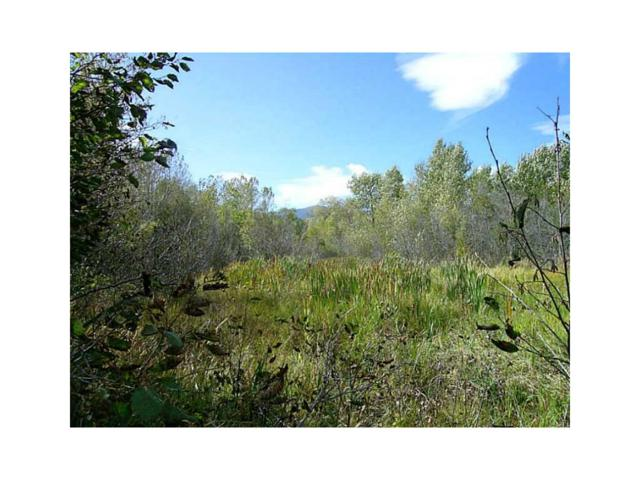 TR 1A-1A Us Highway 212, Red Lodge, MT 59068 (MLS #263676) :: The Ashley Delp Team