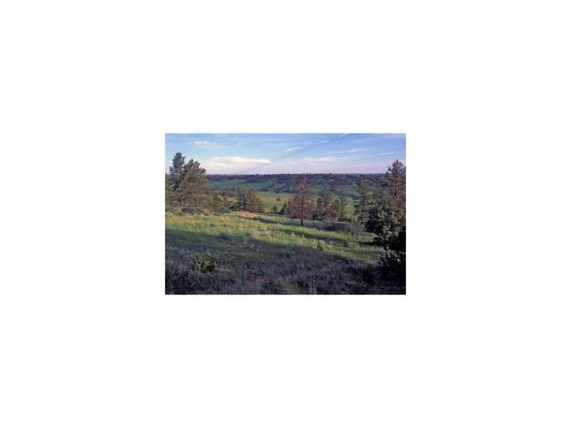 4477 Ironhorse Trail, Billings, MT 59106 (MLS #271639) :: The Ashley Delp Team