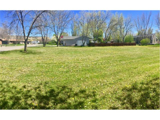 3012 Arnold Palmer Drive, Billings, MT 59106 (MLS #272057) :: Realty Billings