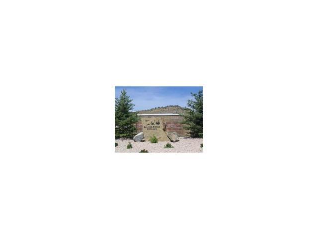 3145 Peregrine Lane, Billings, MT 59106 (MLS #274782) :: The Ashley Delp Team