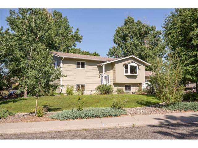 625 Cairo Place, Billings, MT 59105 (MLS #274848) :: Realty Billings