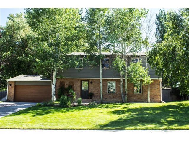 532 Wigwam Trail, Billings, MT 59105 (MLS #275041) :: Realty Billings