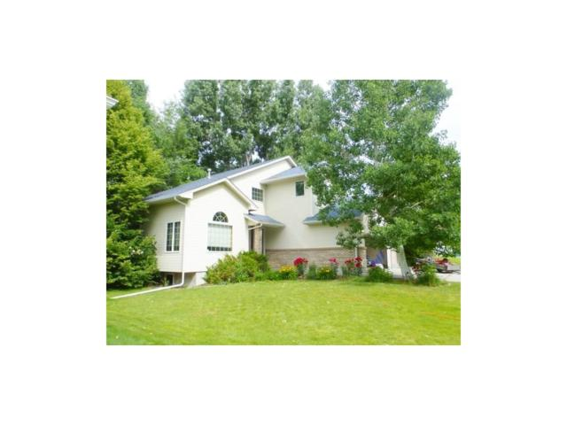 2718 Terrace Drive, Billings, MT 59102 (MLS #275045) :: Realty Billings
