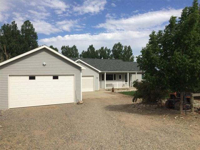 167 Whitehorse Ranch Rd, Laurel, MT 59044 (MLS #275060) :: The Ashley Delp Team