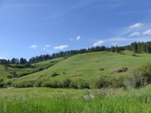 lt 36 Forest Grove Road, Lewistown, MT 59457 (MLS #275071) :: Realty Billings