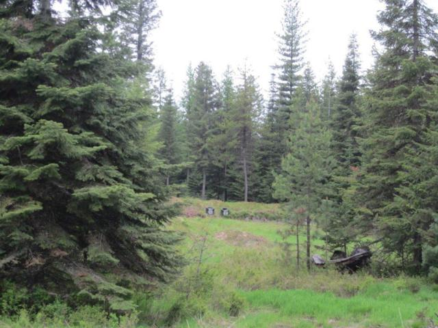 65 Copper Ridge Road, Trout Creek, Other-See Remarks, MT 59874 (MLS #275561) :: The Ashley Delp Team