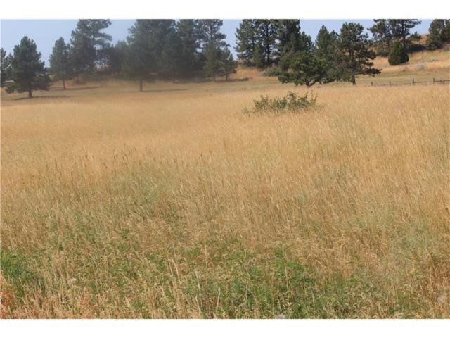 Old Montana Rd Old Montana Rd, Billings, MT 59101 (MLS #275722) :: Realty Billings