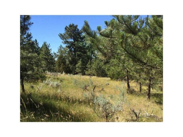 Lot 40 Box Canyon Springs, Billings, MT 59101 (MLS #276922) :: Realty Billings