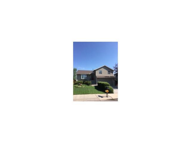3723 San Juan Drive, Billings, MT 59102 (MLS #276933) :: Realty Billings
