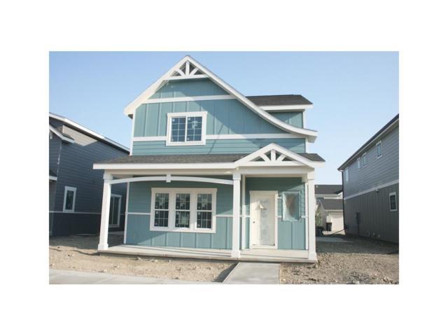 1613 Island View Drive, Billings, MT 59101 (MLS #277756) :: Realty Billings