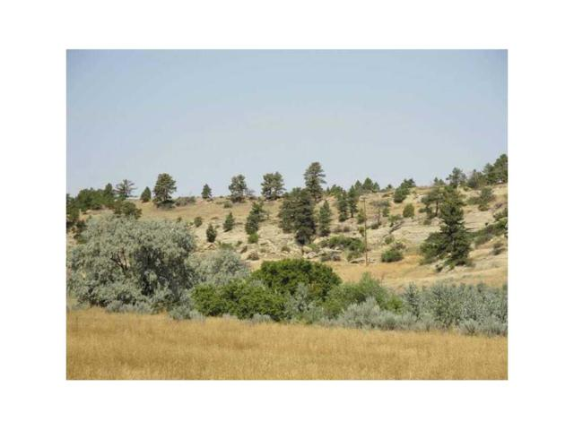 0 Alkali Creek Road, Billings, MT 59105 (MLS #277787) :: Realty Billings