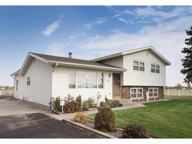 9741 Rudio Road, Billings, MT 59101 (MLS #279176) :: Realty Billings