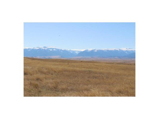 Beaver Creek Ranch, Absarokee, MT 59001 (MLS #279226) :: Realty Billings