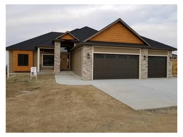 1400 Plateau Road, Billings, MT 59105 (MLS #280352) :: Realty Billings