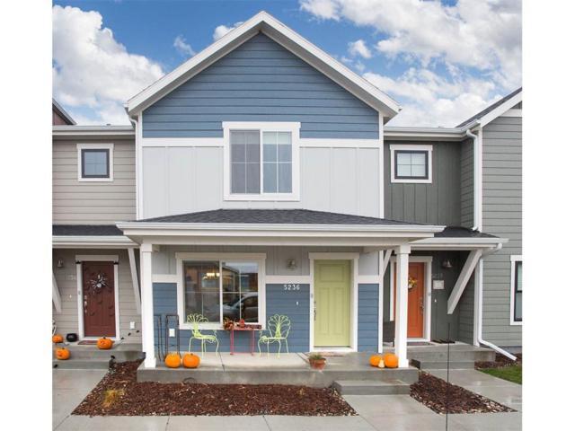 5236 Golden Hollow Road, Billings, MT 59101 (MLS #280422) :: Realty Billings
