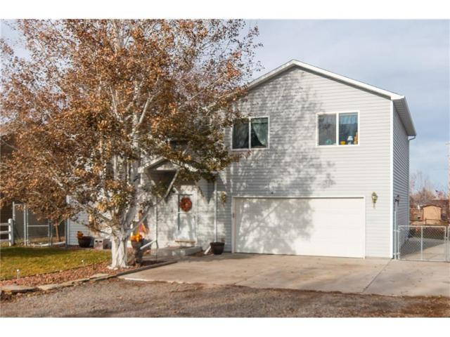 2949 Unertal Avenue, Billings, MT 59101 (MLS #280620) :: Realty Billings