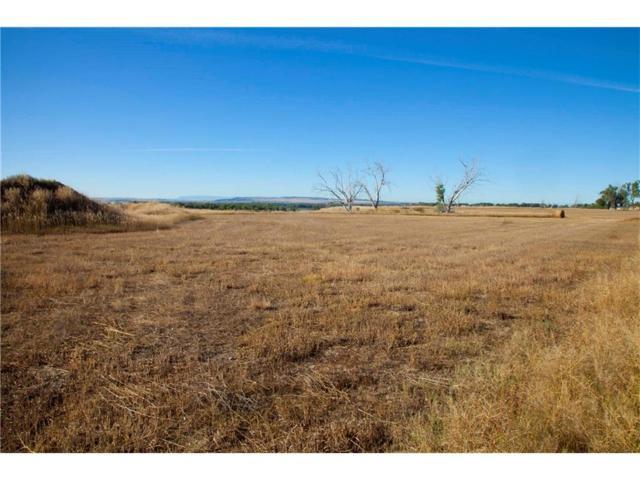 7825 Eagle Bend Boulevard, Shepherd, MT 59079 (MLS #281504) :: Search Billings Real Estate Group