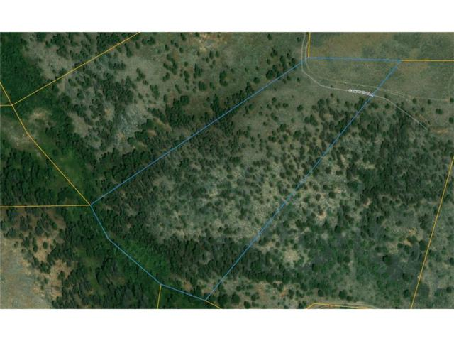 TBD Grizzly Meadow Road, Emigrant, Other-See Remarks, MT 59027 (MLS #281617) :: The Ashley Delp Team