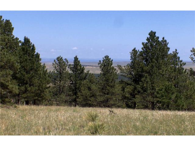 nhn Canyon View Rd, Lusk, Wyoming, Other-See Remarks, MT 82225 (MLS #281647) :: The Ashley Delp Team