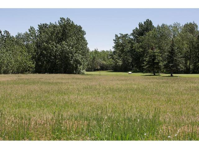 LOT 69 Lobo Court, Red Lodge, MT 59068 (MLS #281652) :: Search Billings Real Estate Group