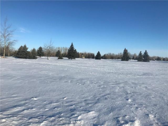 Lot 34 Grizzly Circle, Red Lodge, MT 59068 (MLS #282041) :: The Ashley Delp Team