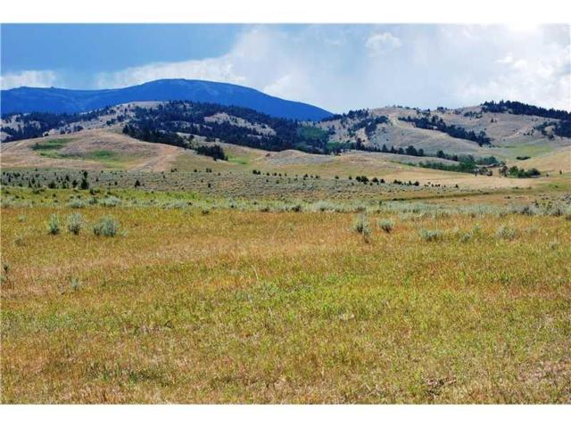 Tract 6 Turnback Trail, Red Lodge, MT 59068 (MLS #283435) :: The Ashley Delp Team