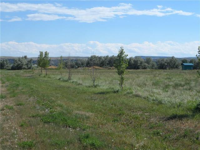 Lot 28A Sagebrush Downs, Park City, MT 59063 (MLS #283597) :: Search Billings Real Estate Group
