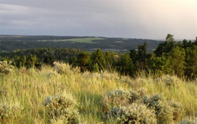 tbd Starlight Drive, Roundup, MT 59072 (MLS #283682) :: Search Billings Real Estate Group