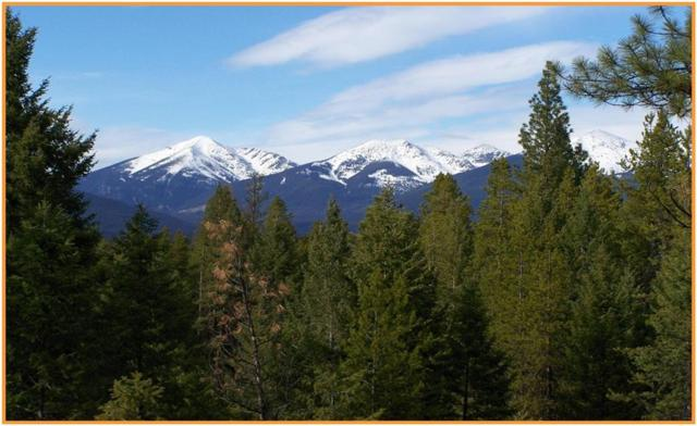 451 Crimson Peak Ct, Seeley Lake, Other-See Remarks, MT 59868 (MLS #283804) :: The Ashley Delp Team