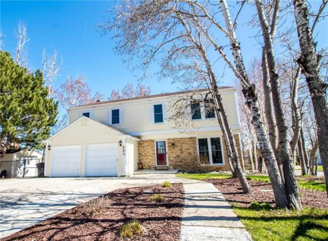 583 Sudan Place, Billings, MT 59105 (MLS #283873) :: The Ashley Delp Team