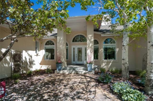 1100 Evergreen Drive, Billings, MT 59105 (MLS #286086) :: Realty Billings