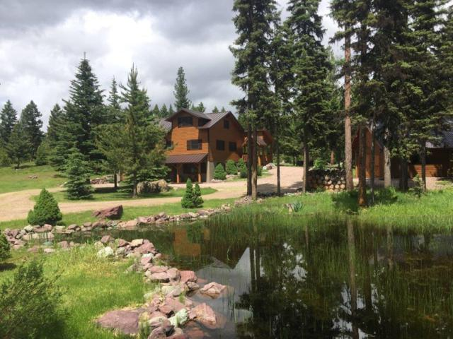 354 Moose Lane, Seeley Lake, Other-See Remarks, MT 59868 (MLS #286322) :: Search Billings Real Estate Group