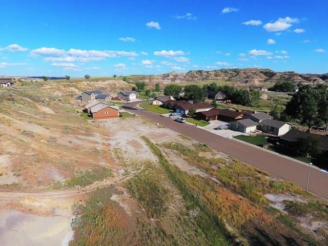 211 Georgetown Drive, Glendive, MT 59330 (MLS #286393) :: Search Billings Real Estate Group