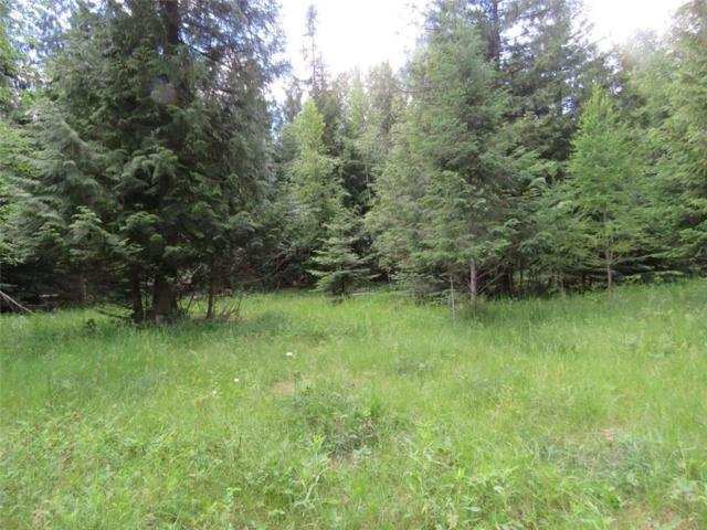 TBD Hunts Mill Rd, Troy, Other-See Remarks, MT 59935 (MLS #286647) :: Search Billings Real Estate Group