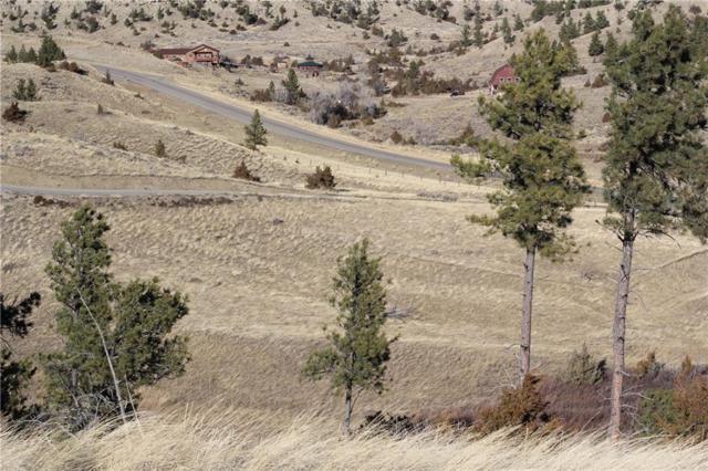 TBD Buffalo Trail Road, Molt, MT 59057 (MLS #286801) :: The Ashley Delp Team