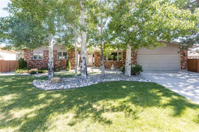 3846 Audubon Way, Billings, MT 59102 (MLS #287285) :: Search Billings Real Estate Group