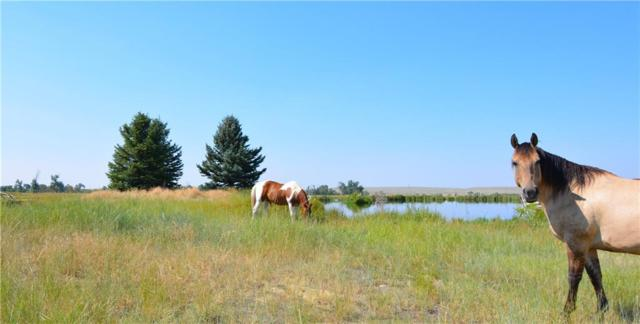 8337 Us Hwy 212, Roberts, MT 59070 (MLS #288566) :: Search Billings Real Estate Group