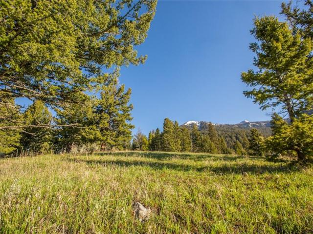 Lot 1A-1 Upper Chief Joseph Trail, Other-See Remarks, MT 59716 (MLS #288583) :: Search Billings Real Estate Group